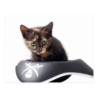 Hacker Kitten Postcard