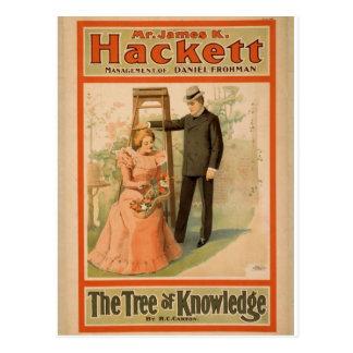 """Hackett, """"el árbol teatro del vintage del conocimi postal"""