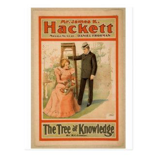 """Hackett, """"el árbol teatro del vintage del conocimi tarjetas postales"""