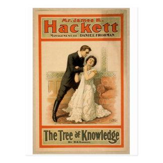 """Hackett, """"el árbol teatro retro del conocimiento"""" tarjetas postales"""