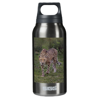 Hackles Up Cheetah Insulated Water Bottle