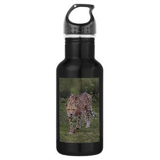 Hackles Up Cheetah Stainless Steel Water Bottle