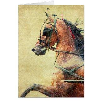 Hackney Pony Greeting Card