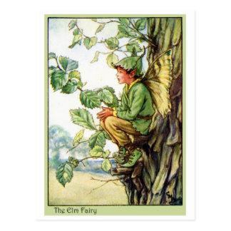Hada del árbol de olmo tarjeta postal