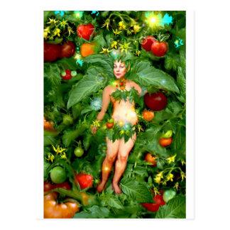 Hada del tomate tarjetas postales