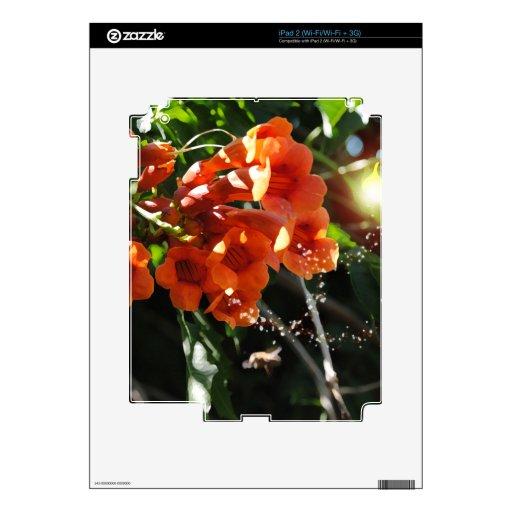 Hada ligera y vid de trompeta floreciente calcomanías para el iPad 2