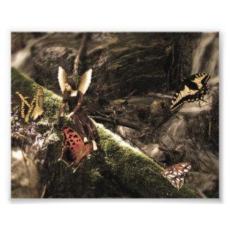 Hada preciosa de la naturaleza de la mariposa impresión fotográfica