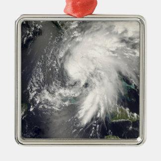 Hada tropical 2 de la tormenta adorno