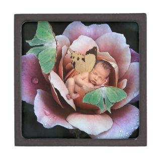Hada y caja de regalo durmientes de las polillas d cajas de joyas de calidad