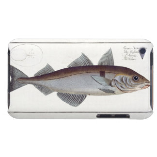 Haddock (Gadus Aeglefinus) plate LXII from 'Ichthy Barely There iPod Cover