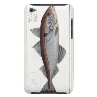 Haddock (Gadus Aeglefinus) plate LXII from 'Ichthy iPod Touch Case