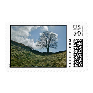 Hadrian's Gap in the Wall, Sycamore Tree Postage