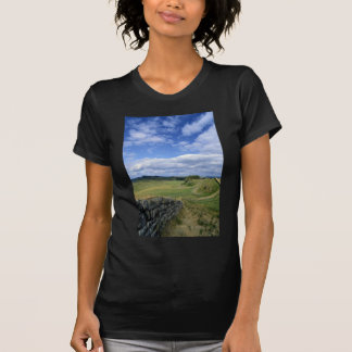 Hadrian's Wall and Swingshields Crags from Cuddy's T-shirt
