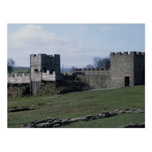 Hadrian's Wall, Vindolanda, Northumberland, U.K. Postcards
