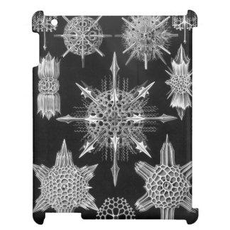 Haeckel Acanthophracta iPad Cases