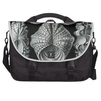 Haeckel Acephala Commuter Bag