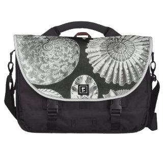 Haeckel Ammonitida Bag For Laptop