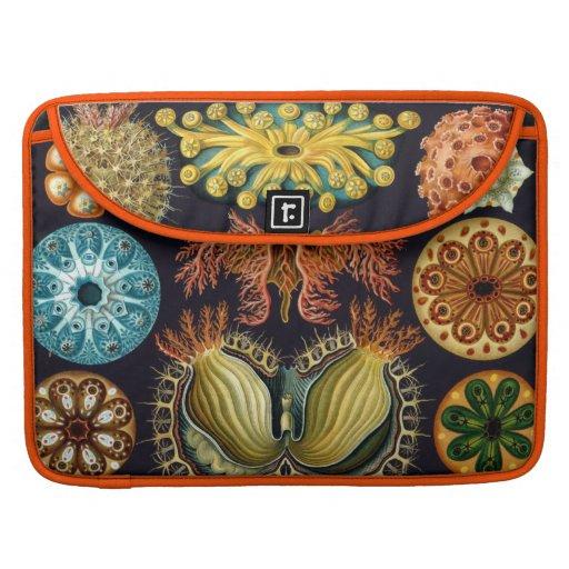 Haeckel Aquatic Marine Life Sleeves For MacBook Pro