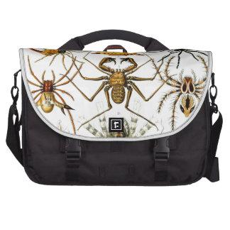 Haeckel Arachnida Bag For Laptop