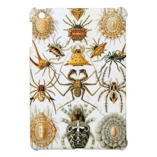 Haeckel Arachnida Cover For The iPad Mini