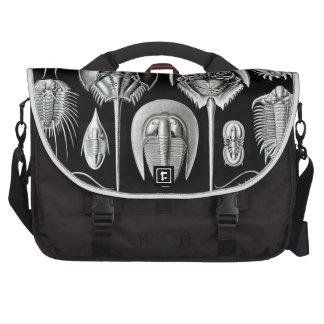 Haeckel Aspidonia Commuter Bag