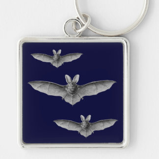 Haeckel Bat Silver-Colored Square Keychain
