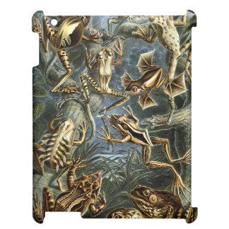 Haeckel Batrachia iPad Cases