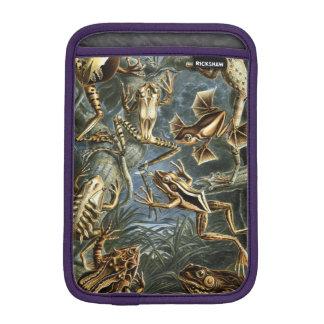Haeckel Batrachia iPad Mini Sleeves