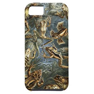 Haeckel Batrachia iPhone SE/5/5s Case