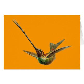 Haeckel Bird Card