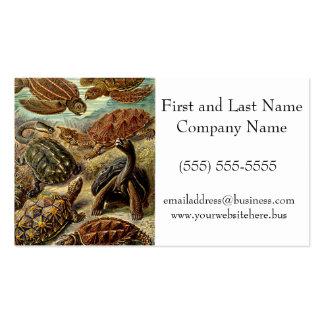 Haeckel Brown Sea Turtle Tortoise Painting Business Card