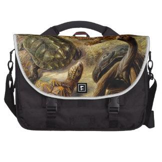 Haeckel Chelonia Computer Bag