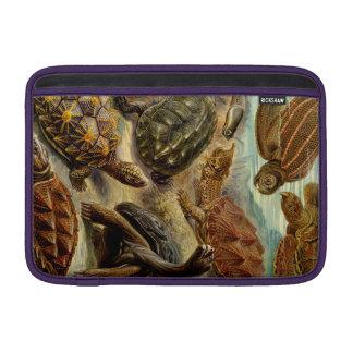 Haeckel Chelonia MacBook Sleeve