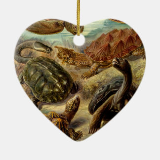 Haeckel Chelonia Ornaments