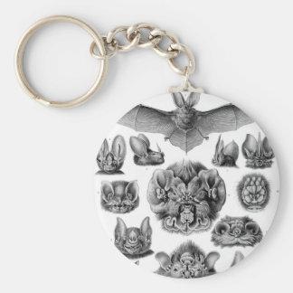 Haeckel Chiroptera Keychain
