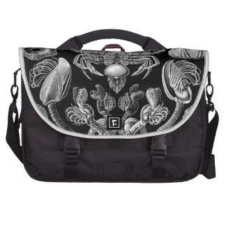 Haeckel Cirripedia Bags For Laptop