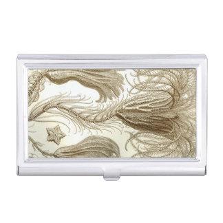 Haeckel Crinoidea Business Card Holders