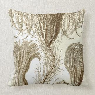 Haeckel Crinoidea Throw Pillow