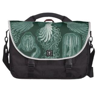 Haeckel Cubomedusae Bags For Laptop