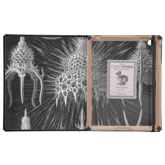 Haeckel Cyrtoidea Cover For iPad