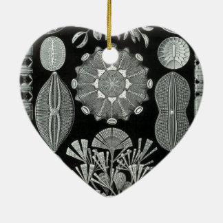 Haeckel Diatomea Christmas Ornaments
