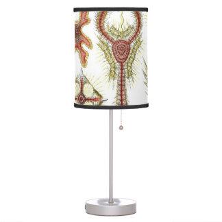 Haeckel Discoidea Lámpara De Mesa