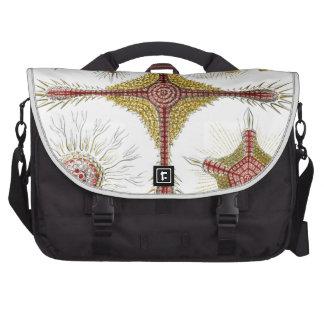 Haeckel Discoidea Laptop Commuter Bag