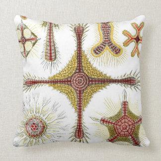 Haeckel Discoidea Throw Pillow