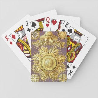 Haeckel discomedusae jellyfish poker cards