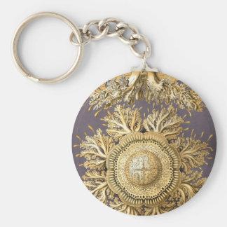 Haeckel Discomedusae Keychain