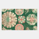 Haeckel Discomedusae Rectangular Sticker