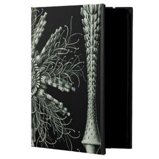 Haeckel Echinidea Case For iPad Air