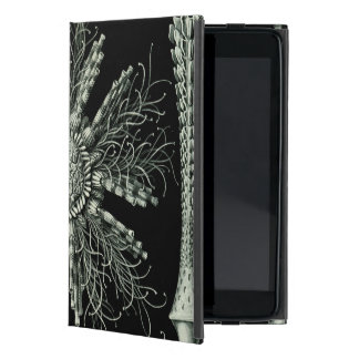 Haeckel Echinidea Covers For iPad Mini