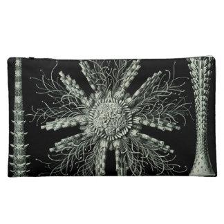Haeckel Echinidea Makeup Bag